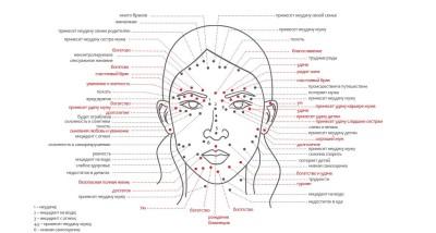 12 зон тела и значение родинок и родимых пятен