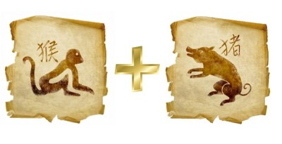 кабан и обезьяна