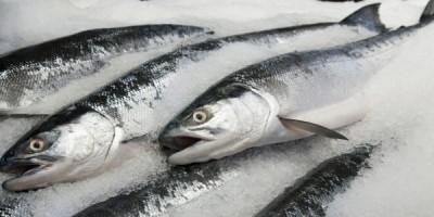 Толкование по виду рыбы